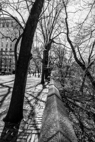 View of 5th Ave, Central Park