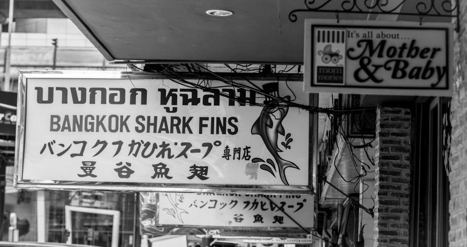 Shark fin restaurant near Bangkok's Siam square