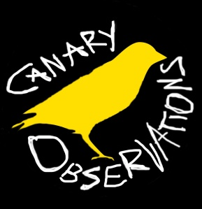 gravatar image, canary observations