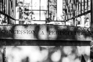 Pere Lachaise impressions - Concession a perpetuite