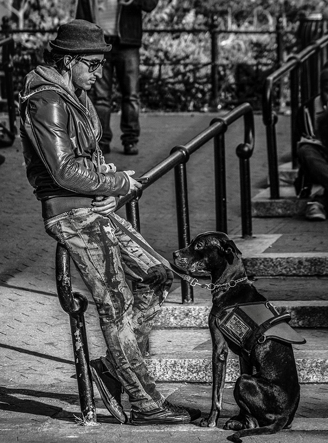 B&W Street Shot of Young Man with Servicedog
