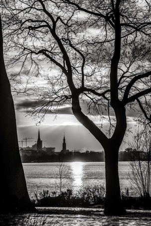 Monochrome Photograph of Winter Sunset - Hamburg
